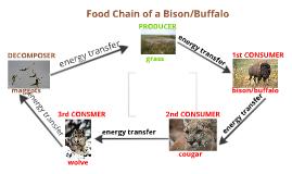 prison food chain