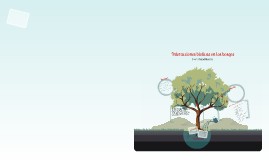 ecosistma Dalel Ibarra 3b