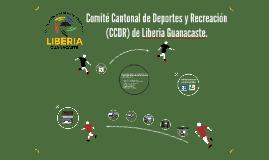 Proyecto Extension Liderazgo