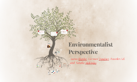 Environmentalist Perspective