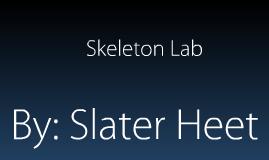 Similar Skeletons Lab