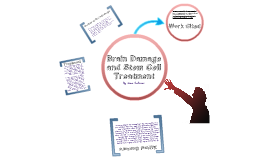 Brain Damage and Stem Cell Treatment