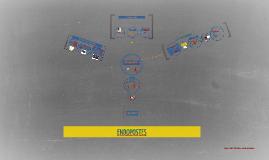 Copy of ENDOPOSTES