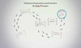 Professional Expectations and Evaluation