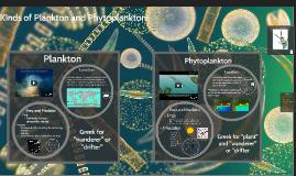 Plankton and Phytoplankton