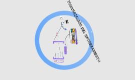 Planificación para el entrenamiento de rendimiento USACH