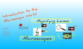 Introduction to MicroWorlds
