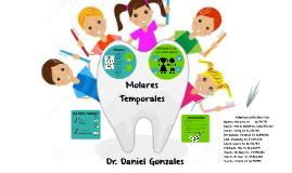 Molares en dentición Temporal