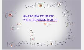 Nariz & S.Pn.