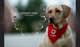 Copy of Therapy Dogs