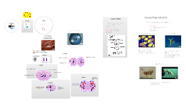 Cell Division and Mitosis by Mr. Chipps