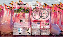 Ecology 1: Behavior