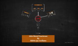 292v Work Practicum