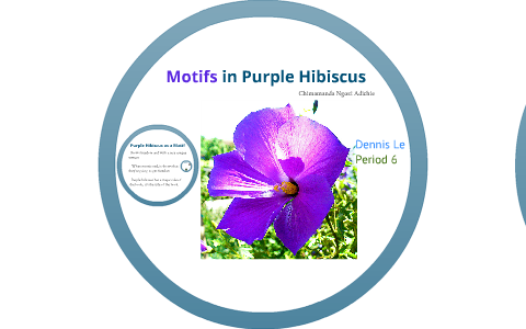 Purple Hibiscus Project On Motifs By Dennis Le On Prezi