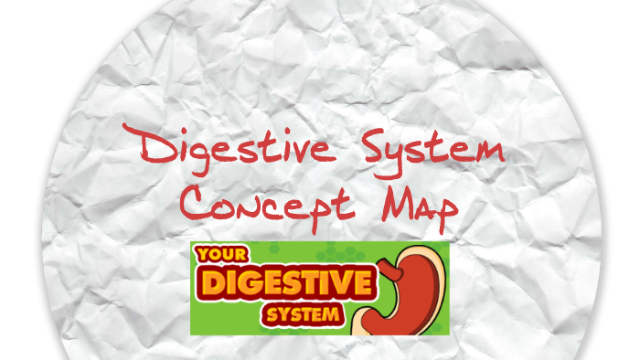 Digestive System Concept Map. by Cindy McGuire on Prezi on