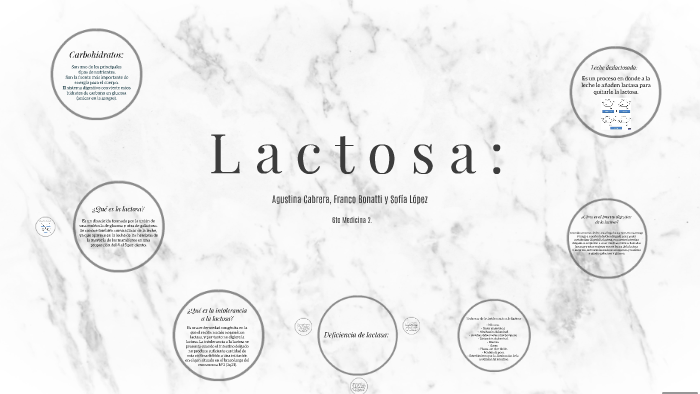 Lactosa By Franco Bonatti On Prezi
