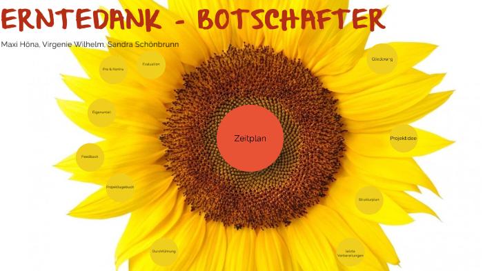 Projekt Seminarkurs By Sandra Schönbrunn On Prezi Next