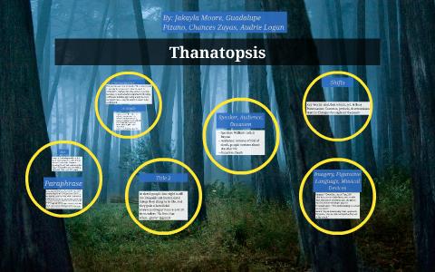 thanatopsis analysis by stanza
