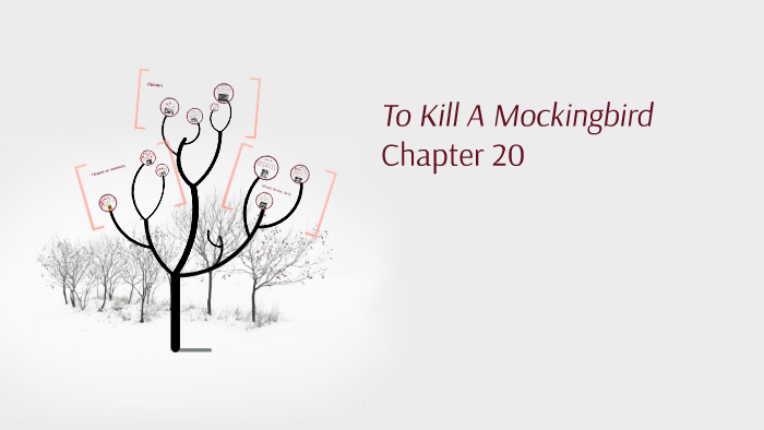chapter 20 to kill a mockingbird
