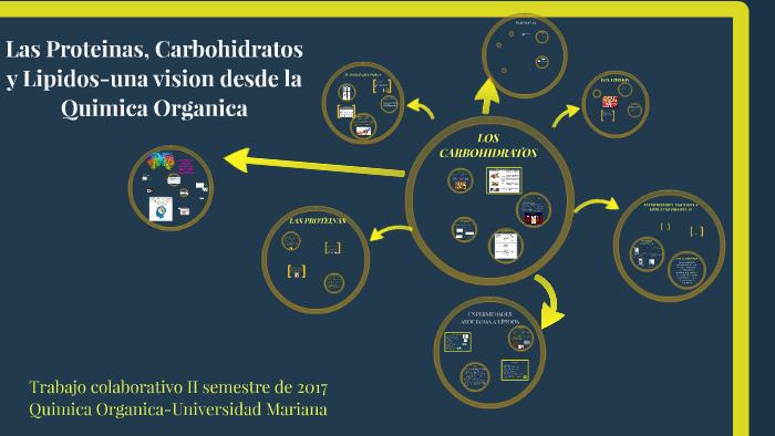 Estructura Quimica De Los Carbohidratos Prezi