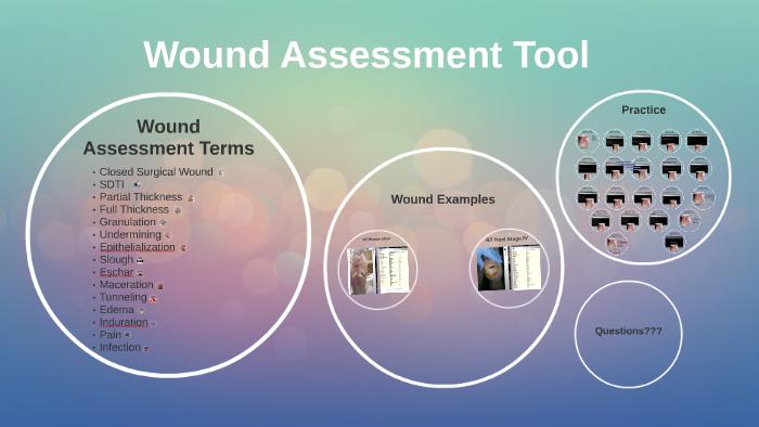 Wound Assessment Tool by Rachel Millard on Prezi