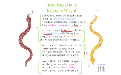 the hunting snake