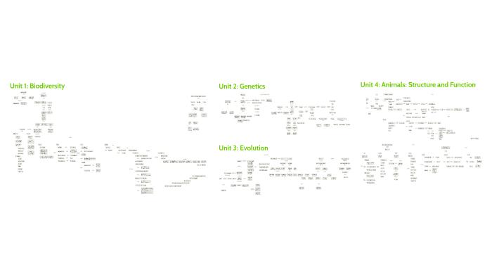 Biology Concept Maps by Sana Hamideh on Prezi on