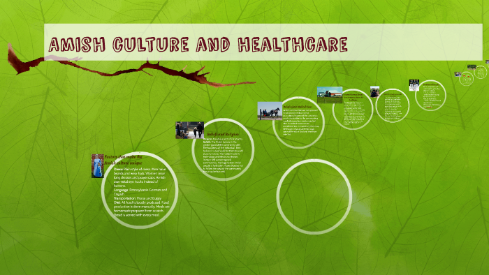 Amish culture and healthcare by Jason Avers on Prezi