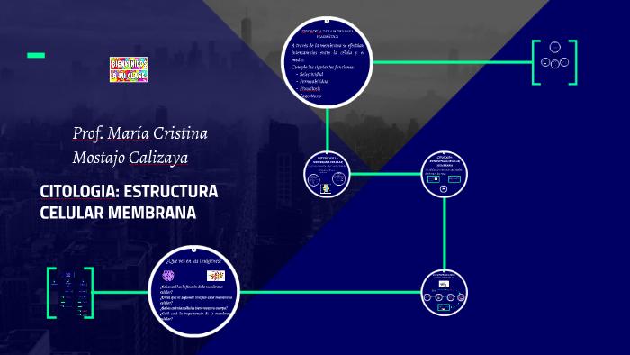 Citologia Estructura Celular Membrana By Maria Mostajo On Prezi