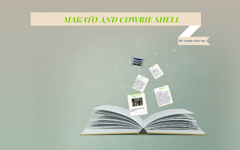 makato and the cowrie shell plot analysis