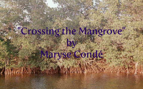 crossing the mangrove