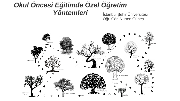 Okul Oncesi Egitimde Ozel Ogretim Yontemleri Sehir By Yusuf Gunes