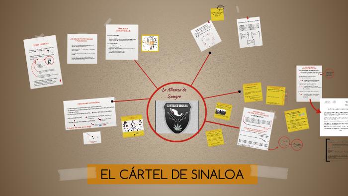 Cártel De Sinaloa By Laura Perezromero On Prezi