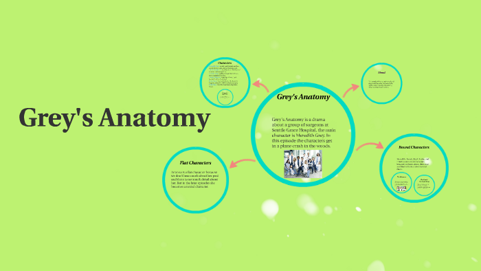 diagram of grey\'s anatomy greys anatomy by mikaylla farrell on prezi  greys anatomy by mikaylla farrell on prezi