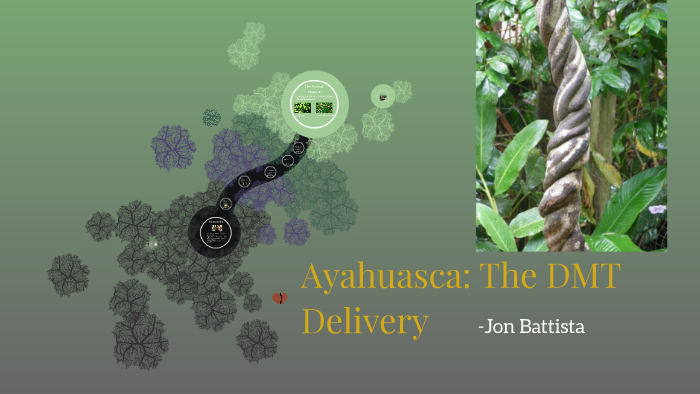 Ayahuasca: The DMT Delivery by on Prezi
