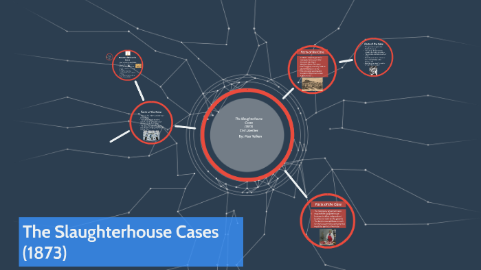 the slaughterhouse cases 1873