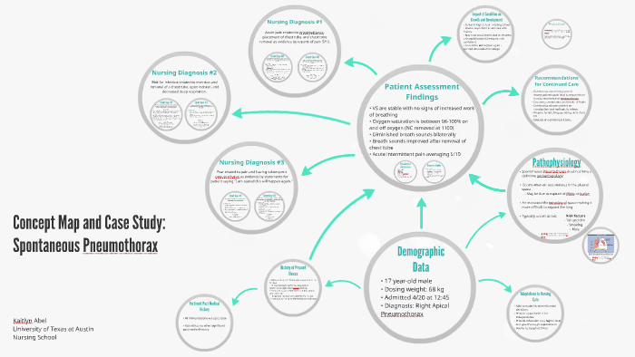 Concept Map And Case Study By Kaitlyn Abel On Prezi