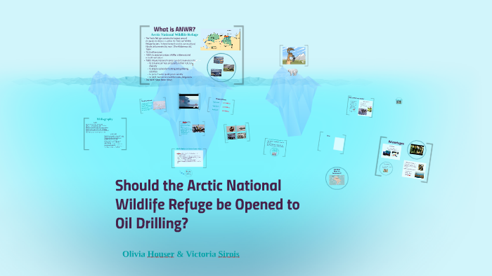 Should the Arctic National Wildlife Refuge be Opened to oil