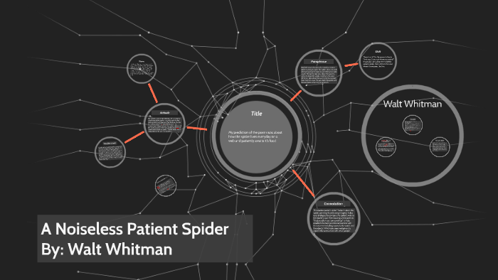 a noiseless patient spider summary