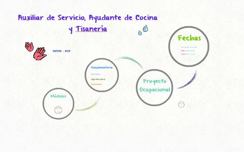 Auxiliar De Servicio Ayudante De Cocina Y Tisanería By