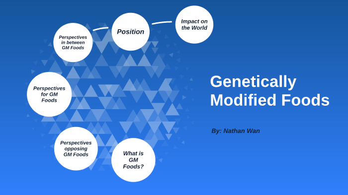 What Is Gm >> Gm Foods By Nathan Wan On Prezi Next