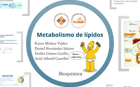 cambiar el metabolismo cura