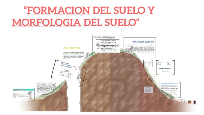 Suelo Y Morfologia Del Suelo By Prezi User On Prezi