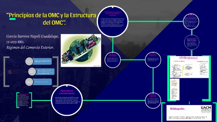 Principios De La Omc Y La Estructura Del Omc By Nayeli