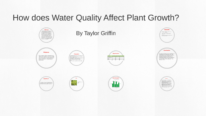 7375693e91 How does Water Quality Affect Plant Growth by Taylor Griffin on Prezi
