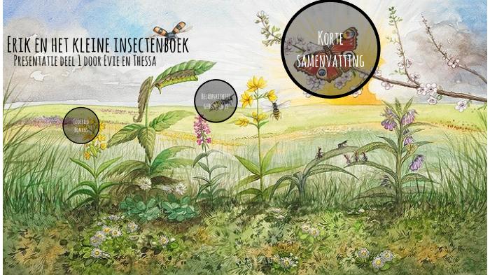 Erik In Het Kleine Insectenboek By Lld Fotografie On Prezi Next