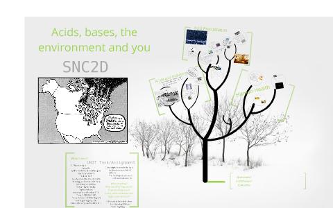 Snc2d Chemistry Assignment