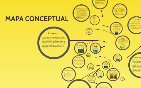 Mapa Conceptual By Alejandra Ruiz Vasquez On Prezi