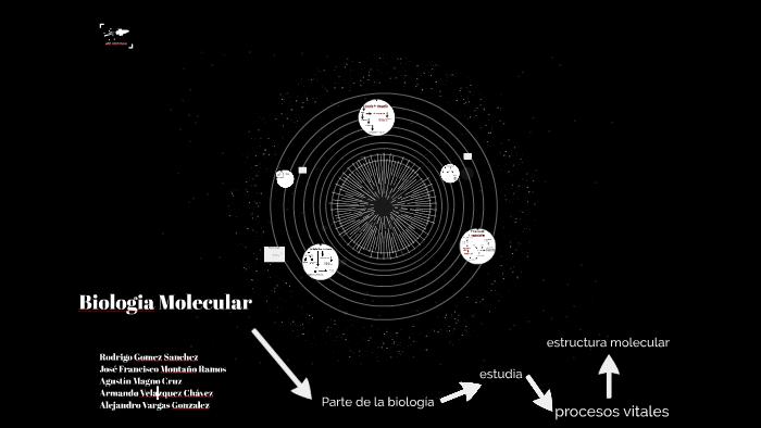 Biologia Molecular By Alejandro Exal On Prezi