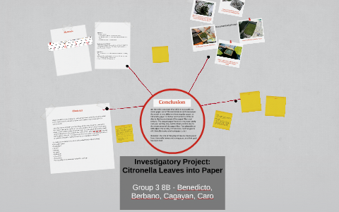 investigatory project paper